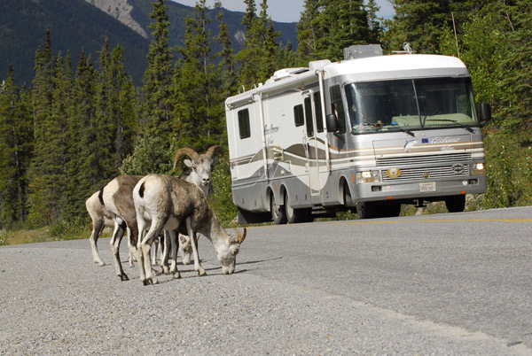 The Perfect RV for Perfect Camping